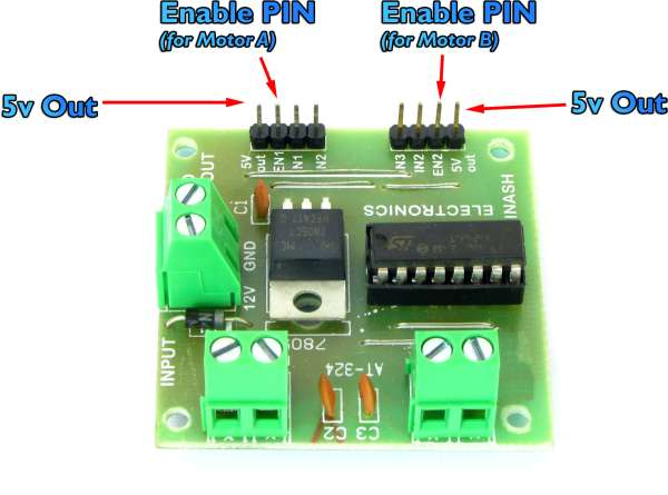 L293 enable pins